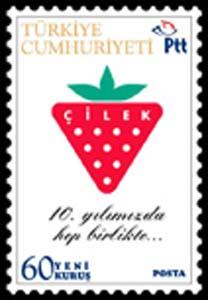 cilekmobilya_k