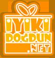 iyikidogdun.net